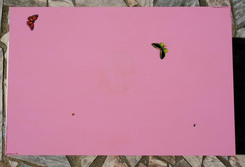 Petits insectes en trompe l'oeil sur table de resto